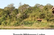 Tongole